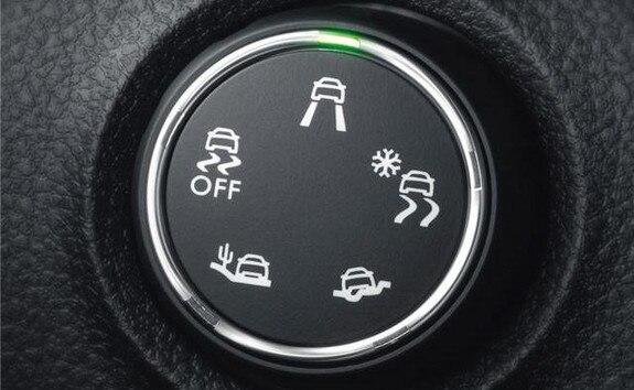 Grip Control Traveller Peugeot